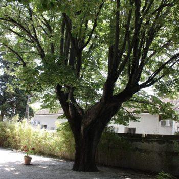 Parking hotel saint remy de provence proche centre ville